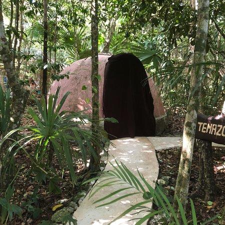 Bilde fra Los Colibries Mayan Jungle Spa