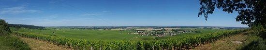 Vosne-Romanee, Frankreich: Le Richebourg