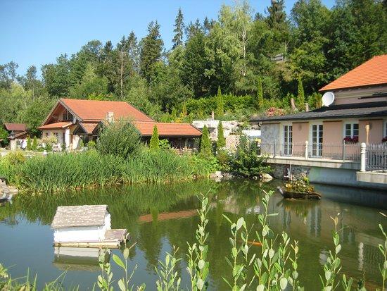 Hauzenberg, Deutschland: Schöner Teich vor der Terasse mit Enten und Kois