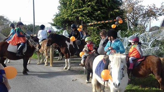 Centre Equestre du Fano