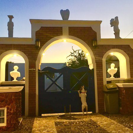 Princess Santorini Villa: Mascotte Luna
