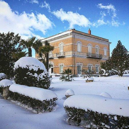 Museo della civilta contadina e fattoria didattica Sant'Andrea: Villa Liberty del barone Speciale di Mallia