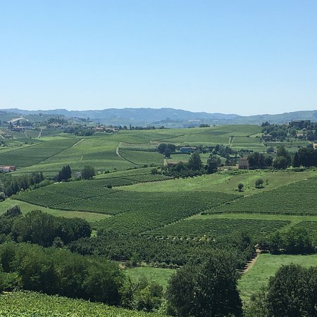 Montegrosso d'Asti, Italy: photo3.jpg