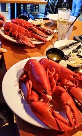 Kingston, Нью-Гэмпшир: Lobster Special