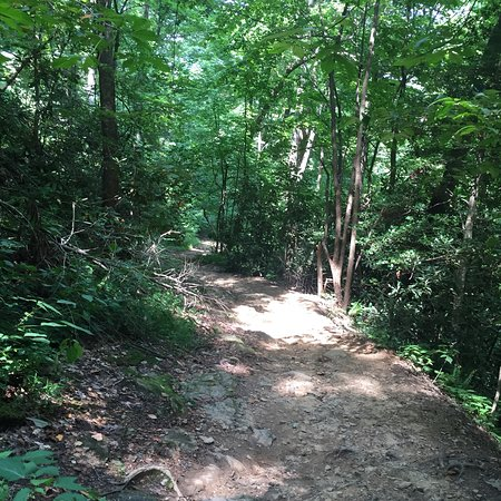 Connellys Springs, Carolina do Norte: photo4.jpg