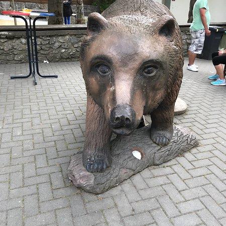 Sommerferien 2018 i Harzen. Fantastisk sted at være på ferie.