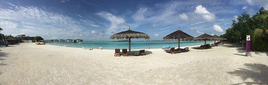 Ảnh về Farukolhufushi Island
