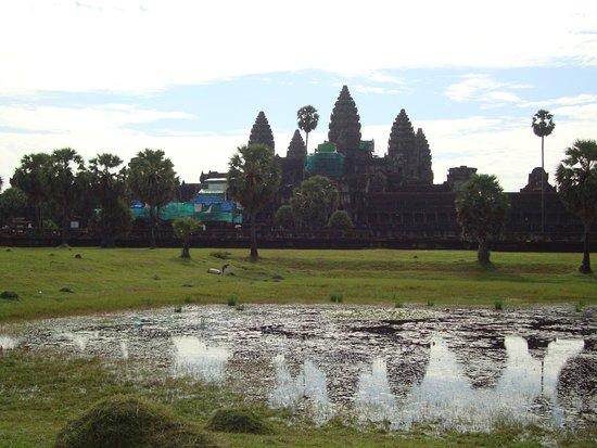 Angkor Wat: Angkor Vat: stupenda