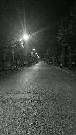 Migliarino, Italy: La tranquillità del viale della stazione, di notte