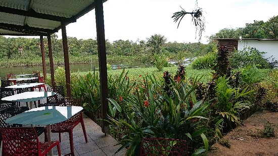 Sinnamary, French Guiana: DSC_0263_large.jpg