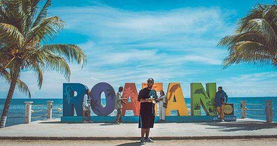 Roatan Dilbert Tours