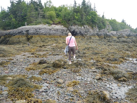 Blacks Harbour, Kanada: crossing to the Island at low tide.
