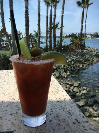 bloody mary on the bay at tidal picture of paradise point resort rh tripadvisor com