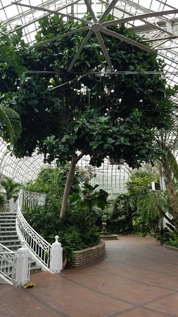 Dolphin Topiaries Picture Of Franklin Park Conservatory And