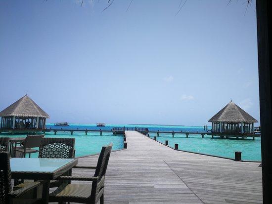Dhonakulhi Island: sea