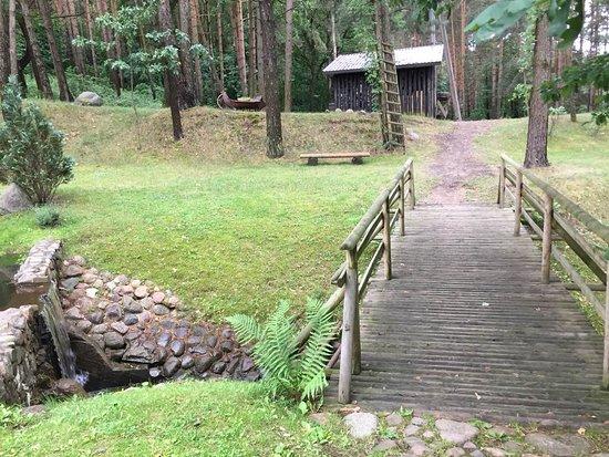 Переход в лес
