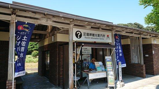 Фотография Tosashimizu