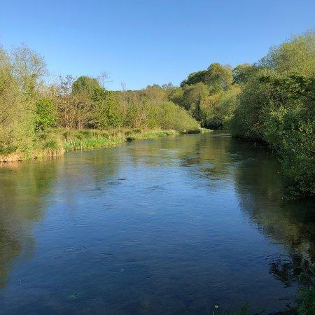 Alresford, UK: photo3.jpg