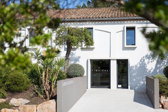 La Londe Les Maures, França: Découvrez nos vins à notre espace de dégustation ouvert du lundi au samedi de 9h à 19h !