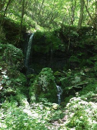可愛らしい滝です
