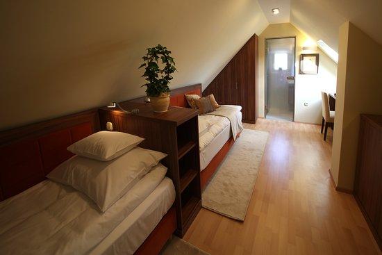 Platan Vararok Guest House: Tetőtéri standard kétágyas szobánk, várárokra néző panoráma kilátással. Könnyen pótágyazható.