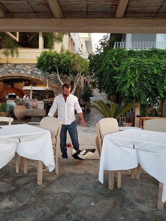 Ferryman Taverna: Владелец.