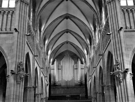 Buen Pastor Cathedral : Organo