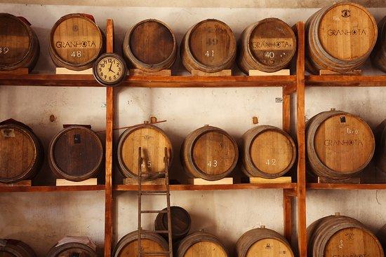 Coursan, Frankreich: Mur de vieillessement des vinaigres