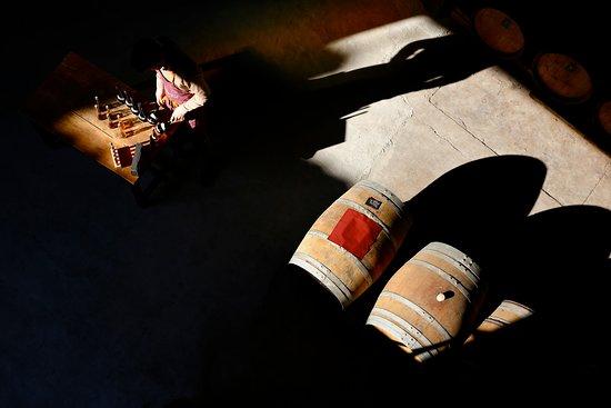 Coursan, Frankreich: Les vinaigres sortent de l'ombre