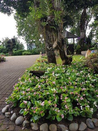 Doi Tung Royal Villa: 1531927803327_large.jpg