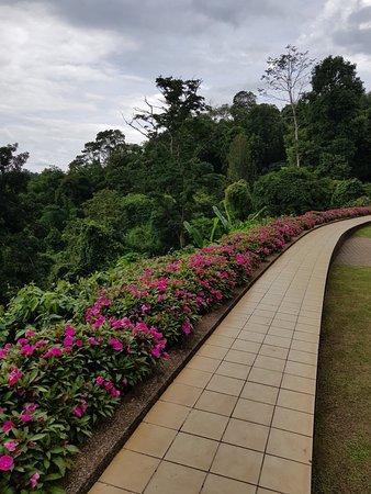 Doi Tung Royal Villa: 1531927809042_large.jpg