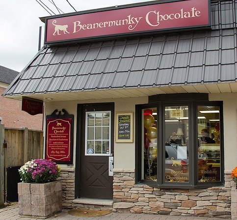 Beanermunky Chocolate Waterdown