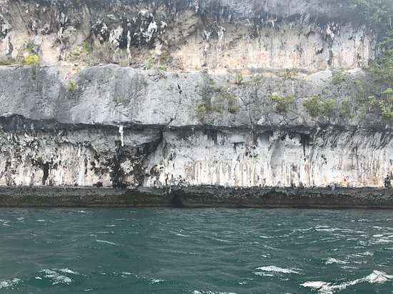 Kaimana, إندونيسيا: The coral walls with ancient painting