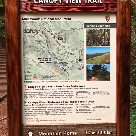Muir Woods National Monument: photo2.jpg
