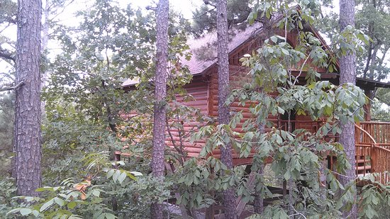 Treehouse Cottages: front view