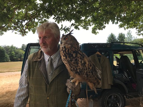 Ampfield, UK: Paul with an Eagle Owl, a really interesting other bird of prey that Paul and Amanda have.