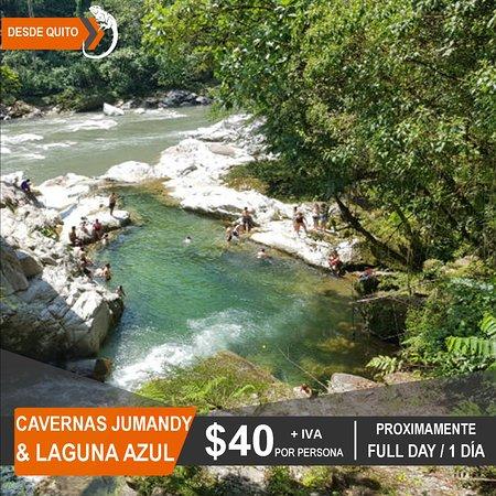Iguana Viajes