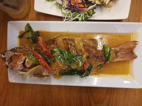 Bird Chilli: Fisch