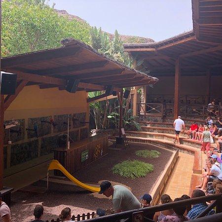 Palmitos Park Foto