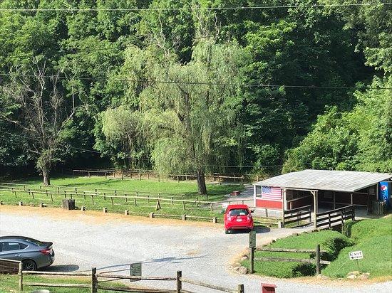 Smoky Mountain Deer Farm & Exotic Petting Zoo Pony Ride Area