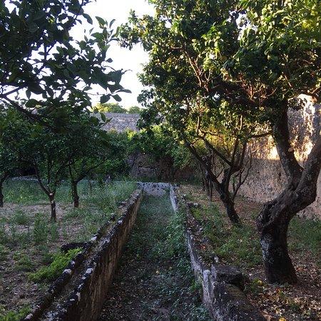 Montalbano, Italia: photo5.jpg