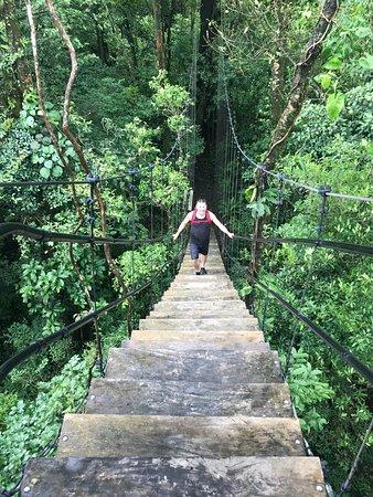 Sensoria Land of Senses: Waterfall family shot