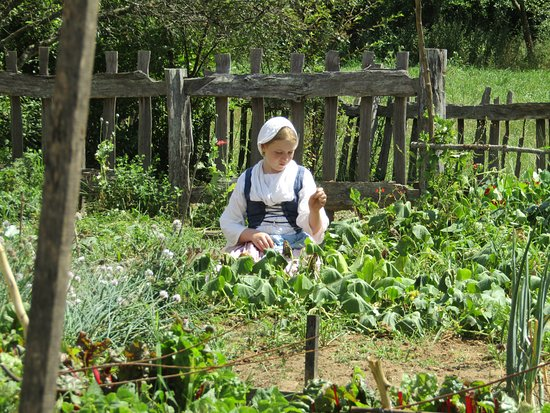 Staunton, VA: German Vegetable Garden