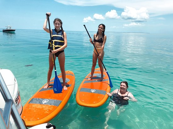 ef106ae30d paddle boarding by the beach :) saw a baby hammerhead, many ...