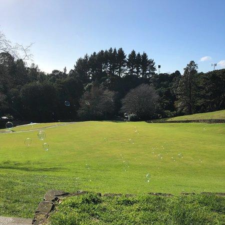Pukekura Park: photo0.jpg