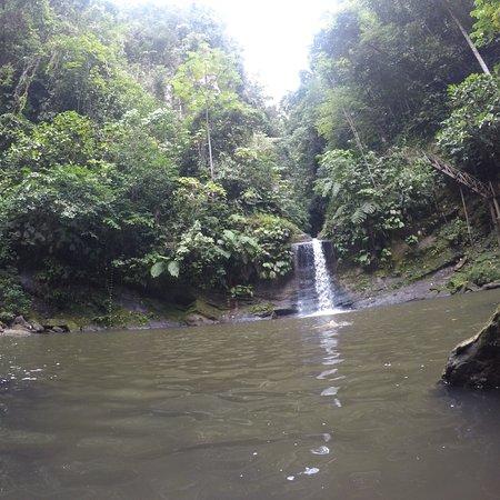 Cascadas de Pishurayacu照片