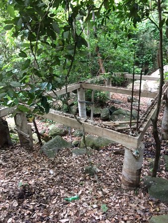 Yelapa Oasis: Yelapa damaged nature