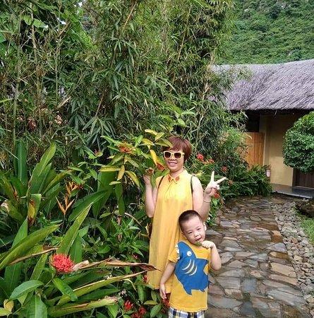 Hoa Binh Foto