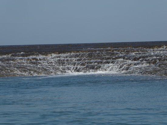 Kimberley Region, Αυστραλία: Montgomery Reef