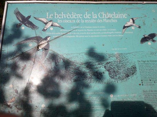 La Chatelaine, Frankrike: Accès facile depuis l'église par des chemins ombragés, bonnes chaussures